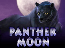 Бесплатные автоматы онлайн Panther Moon
